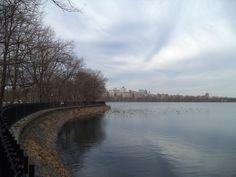Central Park, NYC- janeiro 2014