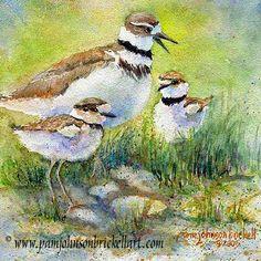 Pam Johnson Brickell - Watercolors & Calligraphy - Original Watercolor Paintings