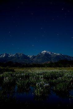 Eastern Sierras And Iris By Moonlight By Nolan Nitschke Sierraspirit Biz