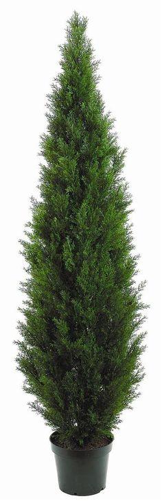 "84"" Cedar Topiary w Green Pot"