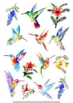 Humming Bird Discover Hummingbird Wall Decals Hummingbird Vinyl Decals for Wall Furniture Tiles Colibri Stickers Home Décor Hummingbird Drawing, Watercolor Hummingbird, Hummingbird Tattoo, Watercolor Bird, Watercolor Paintings, Body Art Tattoos, Hand Tattoos, Fox Tattoos, Tree Tattoos