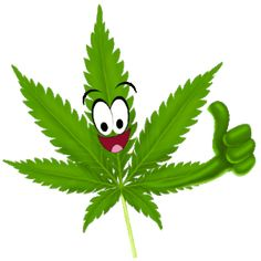 cannabisseal1