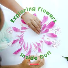 This week's Simple Science Activity: a hands-on look at what's inside a flower!