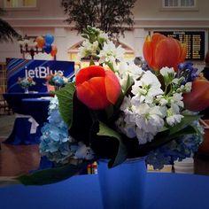 Savannah Welcomes JetBlue