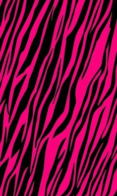 1000 Images About Zebra Wallpaper On Pinterest Iphone