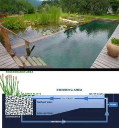 Awesome eco pool
