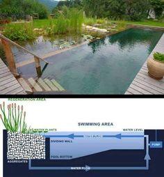 Awesome eco pool