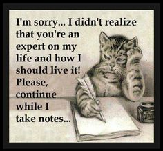 Here's to all those people out there who like to be catty . . .