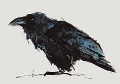 CROW NO 14 Limited Edition A5 Fine Art Glicee by clockworkchild, $40.00