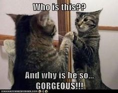 Me in the mirror lol