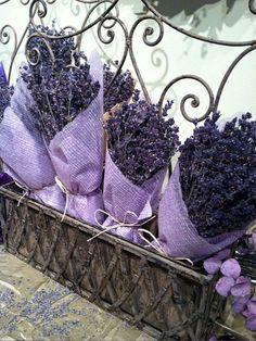 Dried Lavender ~ Ana Rosa