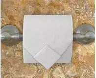 Because everybody poops. and sometimes you forget your phone and there's no shampoo bottles around Toilet Paper Origami, Toilet Paper Art, Napkin Folding, Paper Folding, Shampoo Bottles, Etiquette, Towel Paper, Forget, Paper Crafts