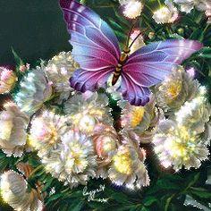 Imagenes Bonitas Con Movimiento De Flores Con Una Mariposa