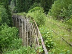 Overgrown railway bridge between Krásný Jez and Ležnice in the Czech Republic. Abandoned Train, Abandoned Cities, Abandoned Houses, Abandoned Mansions, Old Trains, Chernobyl, Train Tracks, Czech Republic, Railroad Tracks