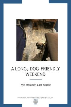 A long dog-friendly weekend in Rye Harbour, East Sussex. #DogFriendly #PubLunches #BeachWalks #RyeHarbour
