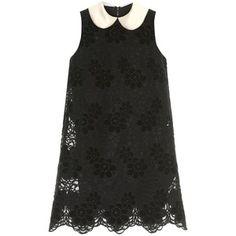 Dolce & Gabbana Satin-collar lace dress