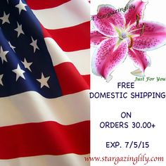 Freedom isn't free, but SHIPPING is! Free domestic shipping on orders of 30.00+. Code: FREESHIP30 please repin so everyone can enjoy the savings. exp. 7/5/15