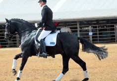 Engage Your Horse's Hind Legs