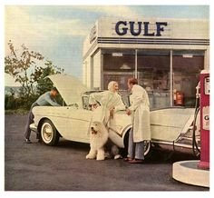 Love the chic white palette of this 1957 image, as well as the darling Old English Sheepdog.
