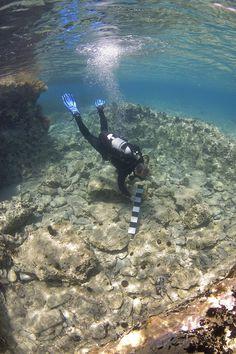 Underwater archaeologist explores a Pavlopetri building