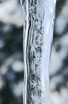 Ice Crystals Within Ice. Look at the delicate little ice crystals within the ice shard, how intricately they've been made. I like how the background is blurred giving the image more depth.
