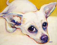 Chihuahua blanc gros yeux Glicee impression d