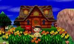 15 Best Animal Crossing Exteriors Images New Leaf Acnl Paths