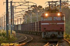 EF81-729 ☆ダイと行く各駅停車の旅☆