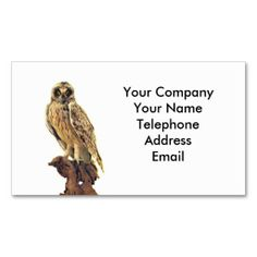 Beef cattle farming or butchering business card taxi business taxidermy of an owl business card templates colourmoves