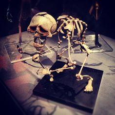 #corpsebride #burtonexpo #burtonuniverse #timburton #instabones #instaweird - @gaelle_oopa- #webstagram Tim Burton Artwork, Corps Bride, Fantasy Films, Goth Art, Film Director, Makeup Art, Darkness, Tatoos, Fun Stuff