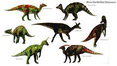 herbivore dinosaurs - Google-haku