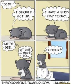 cat comic cat meme funny cat Comic Strips 10 Ways to Spoil Your Senior Cat Stupid Funny Memes, Funny Texts, Hilarious, Funny Stuff, Funny Things, Odd Ones Out Comics, The Odd Ones Out, Memes Humor, Cute Kittens