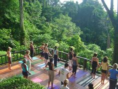 Today yoga is commonly found in many parts of Costa Rica. Here are 4 of the best spots to find your yoga in Costa Rica. Costa Rica, Tulum, Places To Travel, Places To Go, Jardin Luxuriant, Yoga Studio Design, Gym Design, Bali, Outdoor Yoga