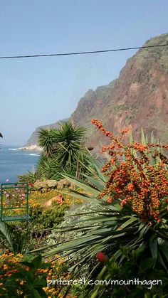 beautiful village Jardim do Mar in Madeira, Portugal Portugal, List Of Cities, To Go, City, Places, Creative, Travel, Beautiful, Wood