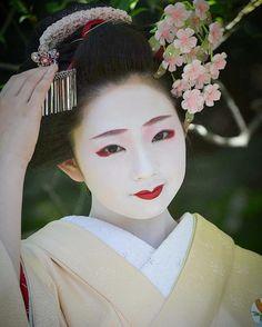 Maiko Toshimomo