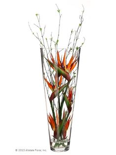 Think differently-- flowers don't always have to sprout out of a vase. These birds of paradise make for an elegant floral display nestled completely inside a tall glass vessel. #fauxfloral