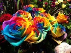przykładowe kwiaty