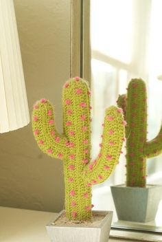 Crocheted cactus.    (photo: Joelle Alcaidinho)