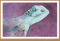 Lucertola - Lizard - Gianluigi Punzo - Naples - Napoli - Italy - Italia - Watercolor - Acquerello - Aquarelle - Acuarela
