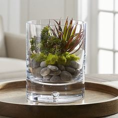 Add a touch of green to your space with silk flowers and artificial plants from Crate and Barrel. Browse life-like flowers, branches, succulents and more. Glass Tealight Candle Holders, Hurricane Candle Holders, Glass Candle, Vases Decor, Plant Decor, Table Decorations, Centerpieces, Succulent Arrangements, Floral Arrangements