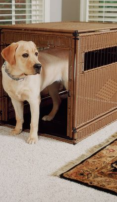Our Rattan Pet Residences offer a private, secluded place for pets that you won't have to hide out of view in the utility room or basement. Functionality combines with luxury in this chic indoor dog crate.