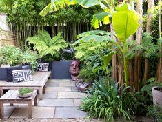 Triumphant briefed gardening interior layoutations More Info Tropical Patio, Tropical Landscaping, Tropical Gardens, Garden Fencing, Garden Art, Garden Design, Garden Boxes, Garden Planters, Jungle Gardens