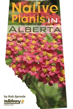 Easy to maintain, Native Plants in Alberta for Your Yard. By Rob Sproule, Salisbury Greenhouse Acreage Landscaping, Front Yard Landscaping, Landscaping Ideas, Farm Gardens, Outdoor Gardens, Best Greenhouse, Greenhouse Ideas, Outdoor Greenhouse, Portable Greenhouse