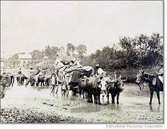 Fugitive African Americans Ford Rappahannock