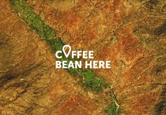 Coffee Bean Here on Packaging of the World - Creative Package Design Gallery