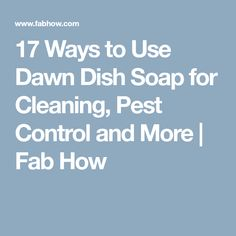 17 Ways to Use Dawn Dish Soap for Cleaning, Pest Control and More | Fab How