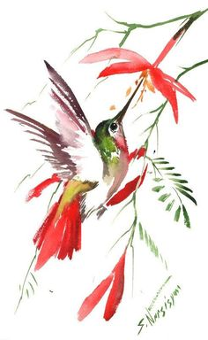 Hummignbird painting, 14 X 9 in, original watercolor art, flying hummingbird, red flowers, abstract