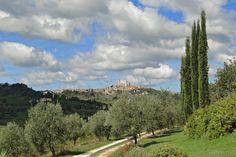 _______________________ -ITALIA -TOSCANA:Vernaccia di San Gimignano  by  Francesco-Welcome and enjoy-  #WonderfulExpo2015  #Wonderfooditaly #MadeinItaly #slowfood #FrancescoBruno    @frbrun  http://www.blogtematico.it   frbrun@tiscali.it    http://www.francoingbruno.it   #Basilicata