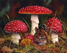 Mouse and Mushrooms by Carl Whitfield