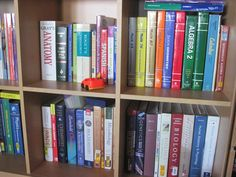 How To Find A Non-Religious Homeschooling Curriculum